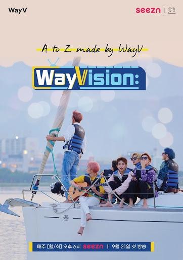 웨이비전 (WayVision)
